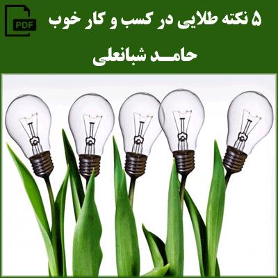 5 نکته طلایی در کسب و کار خوب - حامد شبانعلی