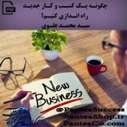 چگونه یک کسب و کار جدید راه اندازی کنیم -سید محمد علوی